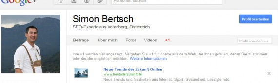 Google +1 Button in WordPress Blogs einfügen
